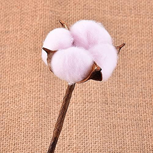KONGZIR 1pc réel Séché Flowe Kapok Coton tête Compatible with Le Mariage de Noël Décoration de Bricolage Couronne Naturel Fleurs séchées (Color : AK744)