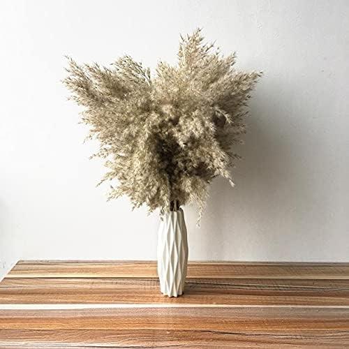 It is very popular AriesDCHAT Fluffy Overseas parallel import regular item Natural Dried Pampas Decor Flowe Wedding Grass