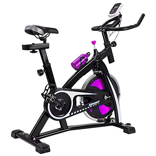 V-FIRE Indoor Cycling Bike Stationary - Exercise Cycle Bike with Water Bottle & Comfortable Seat Cushion (FB002 Pink/Silver)