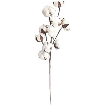 JIUY Flor de simulación 10 Ramas de algodón Natural Marcas Inicio ...