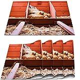 COFEIYISI Manteles Individuales Juego de 4,Foto de cría de Animales de Granja con gallina ponedora incubando Dentro de Jaula y Huevos Salvamanteles para la Mesa de Comedor de Cocina 30x45cm