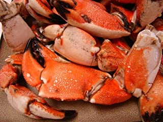 Rock Crab Claws (4 POUNDS)