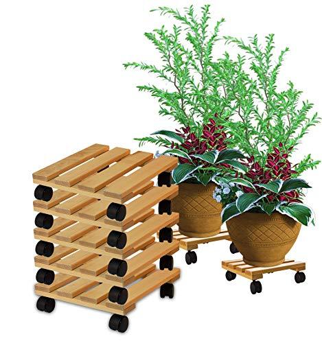 BigDean 5X Pflanzenroller eckig Buchenholz massives Holz 30 x 30 cm bis 120 Kg Rolluntersetzer
