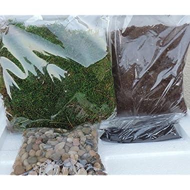 Terrarium Essentials Kit sold by JM Bamboo