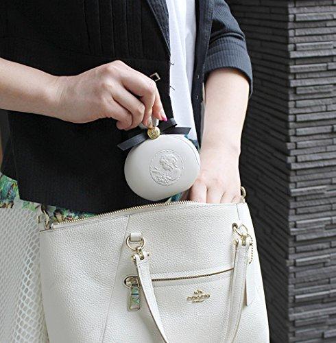 八幡化成洋服クリーナー&ミラーsceltevieParfait(パルフェ)ピンク