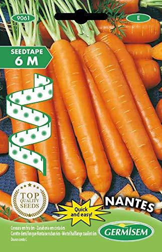 Germisem Nantes Semillas de Zanahoria en Cinta de 6 m (EC9061)