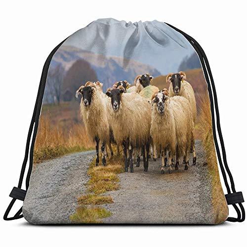 Ccsoixu Flock Scottish Blackface Sheep Ewes On Animals Wildlife Drawstring Backpack Gym Dance Bags for Girls Kids Bag Shoulder Travel Bags Birthday Gift for Daughter Children Women