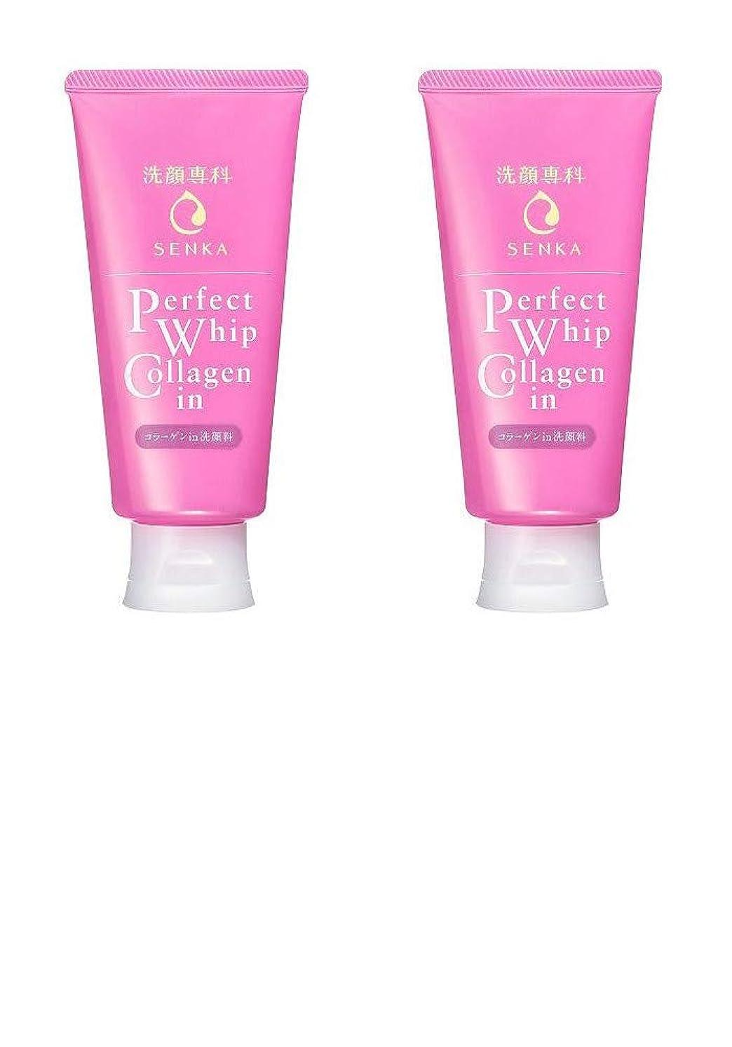 写真上級サワー【2個まとめ買い】洗顔専科 パーフェクトホイップ コラーゲンin 120g