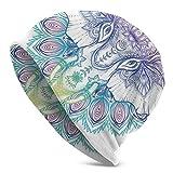 Gorro Hombres Mujeres - Dibujado a Mano Arco Iris Verano Color Guardián Asiático de la Construcción Animal Print - Gorra Unisex con Cráneo Liso Gorro de Punto