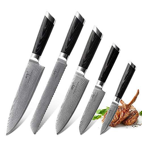 NANFANG BROTHERS 5 Pezzi Set di Coltelli Damasco da Cucina Professionali Chef Giapponese Acciaio da 67 Strati Coltello da Cuoco