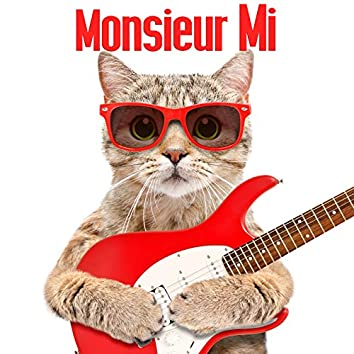 Monsieur Mi