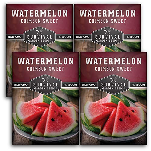 Survival Garden Seeds - Crimson Sweet Watermelon Seed for Planting - 4 Packets with Instructions to Plant and Grow in Your Home Vegetable Garden - Non-GMO Heirloom Variety