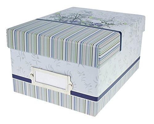Color Variation Fotobox für 700 Fotos in 10x15 cm Foto Box mit Registerkarten: Farbe: Blau
