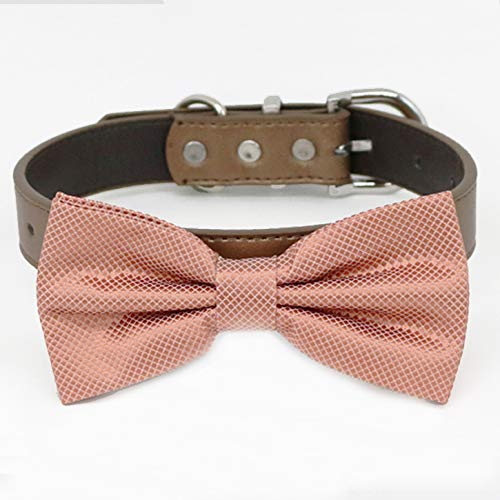 Gifts Copper bow tie collar XS Pu and XXL to Shipping included adjustable