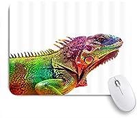 PATINISAマウスパッド カメレオンカラフルトカゲ爬虫類爬虫類学 ゲーミング オフィス最適 高級感 おしゃれ 防水 耐久性が良い 滑り止めゴム底 ゲーミングなど適用 マウス 用ノートブックコンピュータマウスマット