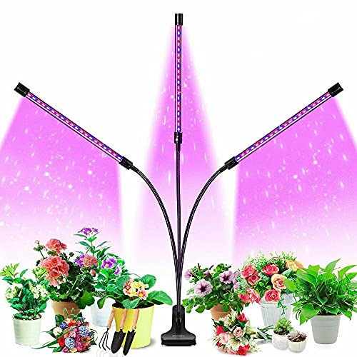 Grow Light, HOOMEDA Tri Head Grow Lights for Indoor Plants with Red Blue Spectrum, 4/8/12H Timer, 10 Dimmable Brightness for Indoor Succulent Plants Growth, 3 Switch Modes, Adjustable Gooseneck