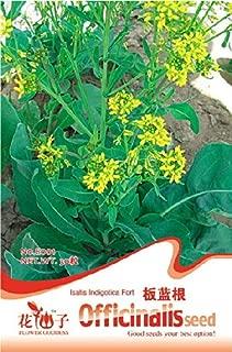 Siam Circus Seeds radix isatidis 30 e001 indoor bonsai flower plant Original packaging seeds for Home Garden Bonsai indoor plants