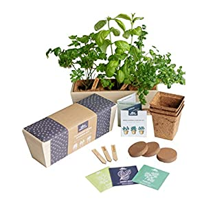 Herb Garden Starter Kit – Grow Live Herbs Indoors from Seed in Your Kitchen or Window – Perfect Gardening Gift – Indoor…