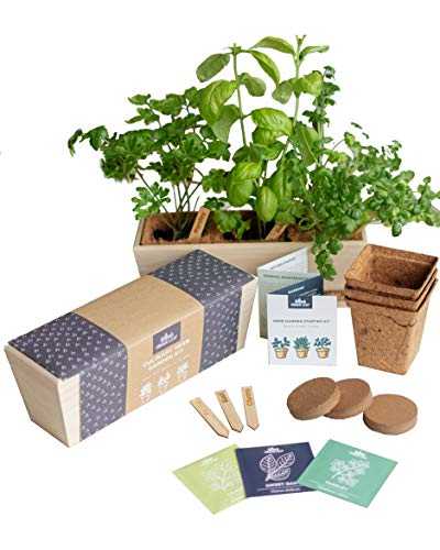 Herb Garden Starter Kit - Grow Live Herbs Indoors from Seed in Your Kitchen or Window - Perfect...