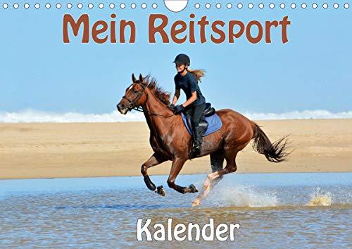 Mein Reitsport Kalender (Wandkal...