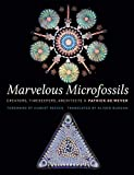 Marvelous Microfossils: Creators, Timekeepers, Architects