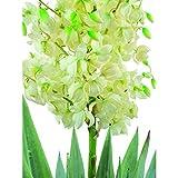 artplants.de Set 2 x Künstliche Yucca Palme mit 40 Blättern, 120 Blüten, 220cm, wetterfest - Kunstpflanzen Yucca - Kunstpalme - 3