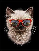 【猫 ねこ めがね】 余白部分にオリジナルメッセージお入れします!ポストカード・はがき(黒背景)