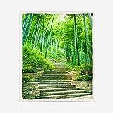 Manta Sherpa Reversible Mantas para Sofás de Felpa de Franela con Estampado Paisaje del Bosque de bambú Manta de Microfibra Suave cálida y sólida para Cama, sofá y Viaje 150X200CM