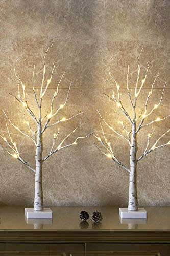 Set of 2- EAMBRITE 2FT 24LT Warm White LED Birch Tree Light Tabletop Bonsai Tree Light Jewelry Holder Decor for Home Party Wedding Holiday