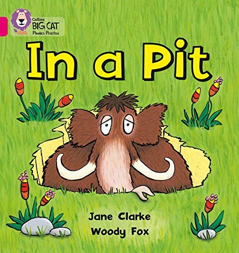 In a Pit (Collins Big Cat Phonics) by Jane Clarke Woody Fox(2010-01-01)