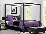 Bakersfield European-Style Metal Canopy Bed (Queen)