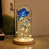 Beauty and The Beast Rose Enchanted Flower with LED Light in Glass Dome for Christmas Valentine's Day Mother's Day Birthday Best Gifts for Girlfriend Wife Women Her - Colorful