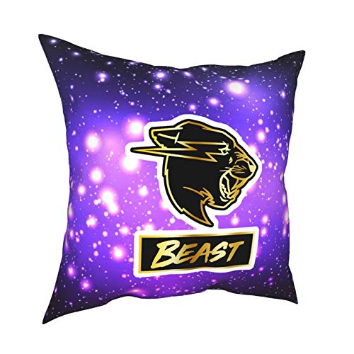 Ynjgqeo Mr Beast Throw Pillow Covers for Sofa Couch Pillowcase Bedroom Car Home Soft Travel Square Gifts 20' X20
