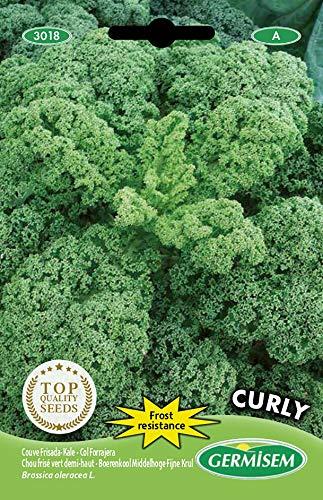 Germisem Curly Semillas de Col Rizada 3 g