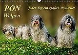 PON - Welpen, jeder Tag ein großes Abenteuer (Wandkalender 2022 DIN A3 quer)