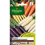 Vilmorin - Sachet graines Carottes mélange de couleurs