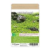 水草の種 mini leaf seed〈ミニリーフシード〉5g アクアリウム 水草絨毯 熱帯魚