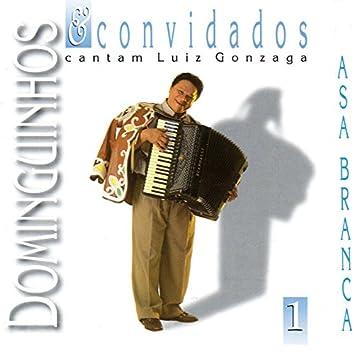 Dominguinhos e Convidados Cantam Luiz Gonzaga, Vol. 1