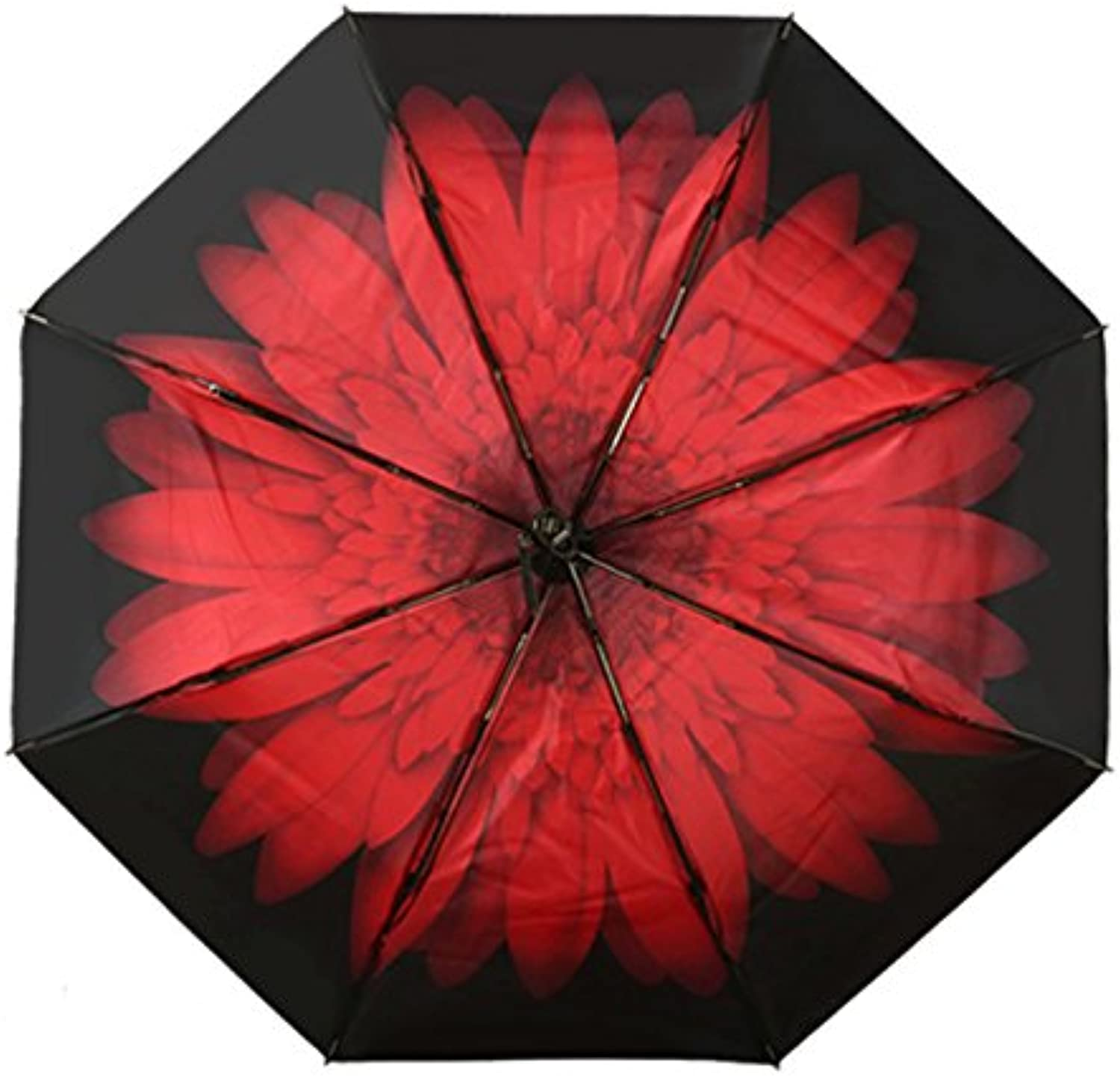 SSBY Double Layer Sun Umbrella Folding Sun Umbrella Black Glue Anti Ultrapurple Umbrella Clear Umbrellabright Red