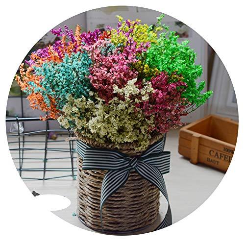 TELLW Ramo de flores secas naturales con flores verdaderas olvides de me, no decoración del hogar, arreglo de flores florales, regalos de fotos