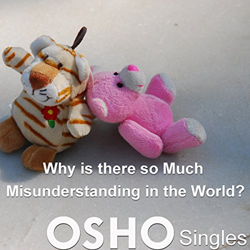 Couverture de Why Is There So Much Misunderstanding in the World