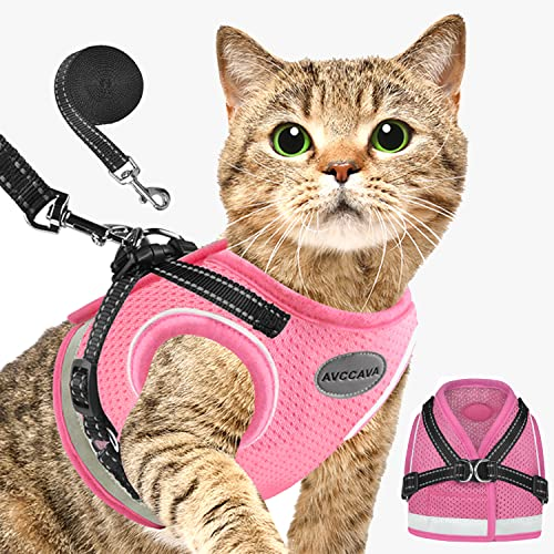 AVCCAVA Cat Harness and Leash for Walking, Kitten Escape Proof Harnesses, Adjustable Reflective Puppy Vest Harness with Leashes Set, Easy Adjustable Soft net Breathable Pet Safety Jacket