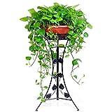 G-HJLXYZWJHOME 1-Pack Iron Art Stands De Macetas, Repisa De Piso De Elegante DiseñO, Patio Exterior Exterior Planta De Patio BonsáI Pantalla Decorativa Estante para Flores