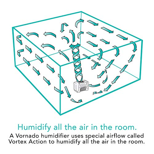 Vornado Evap40 4-Gallon Evaporative Humidifier with Adjustable Humidistat and 3 Speeds