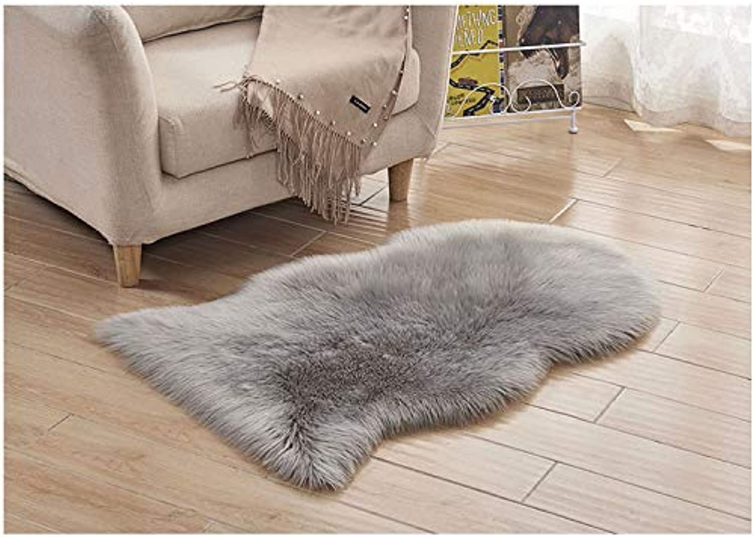 Plush Thick Carpet Bedroom Living Room Floor Mat Window Cushion Sofa Cushion, Washable and Contact with Skin - Gary,1P60150CM