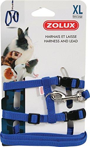 Zolux Casual Kit Harnais pour Petit Mammifère Bleu Taille XL
