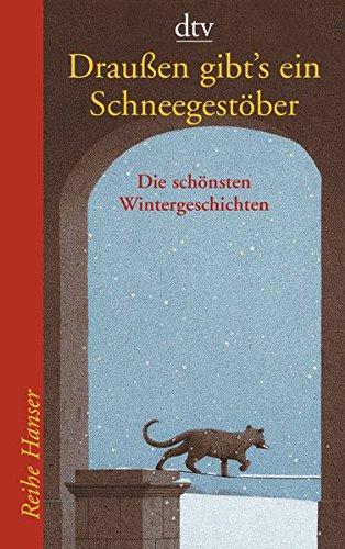 Draußen gibt's ein Schneegestöber: 24 Adventskalender-Geschichten (Reihe Hanser)