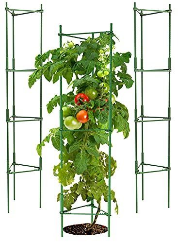 K-Brands Tomato Cage - Plant Stakes and Support with Clips (3 Pack - Upto 72 inches Tall)