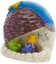 Spongebob Squarepants Aquarium Ornament, 2-1/2 by 2-3/4 by 1-Inch