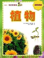 我们的地球 植物